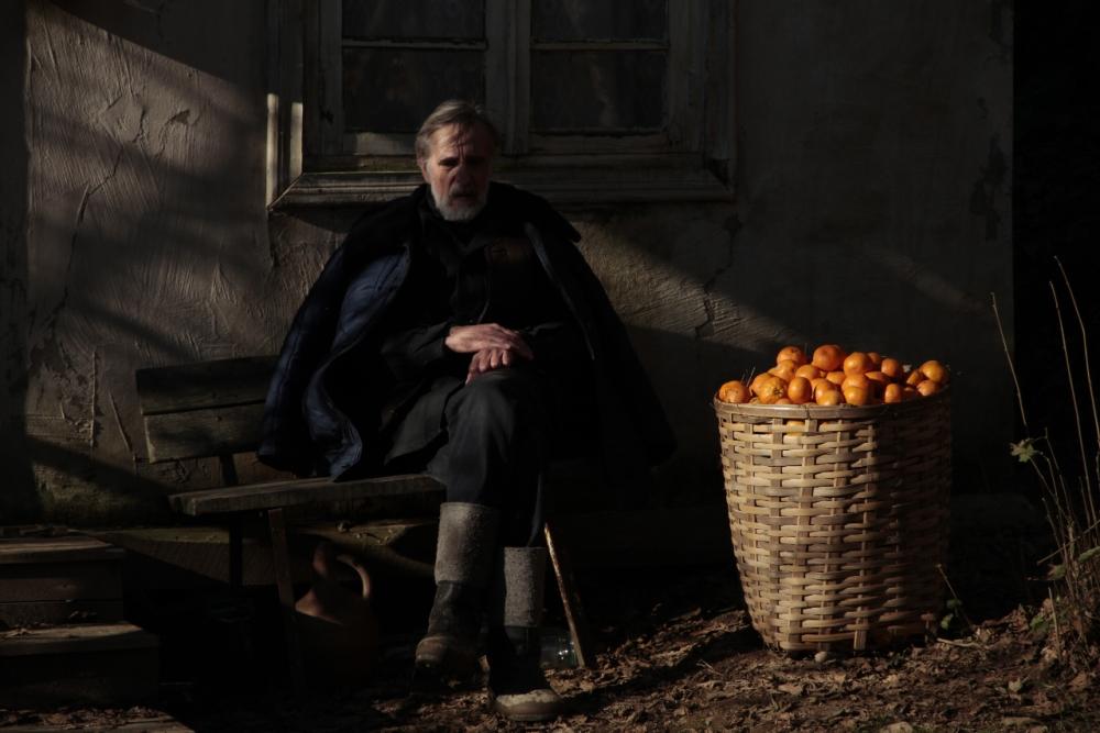 mandarinid