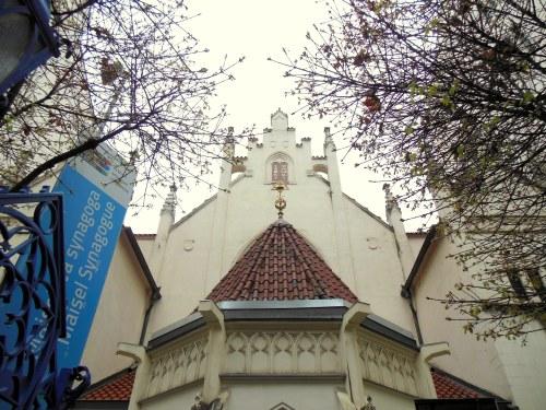 synagoga_Maisela